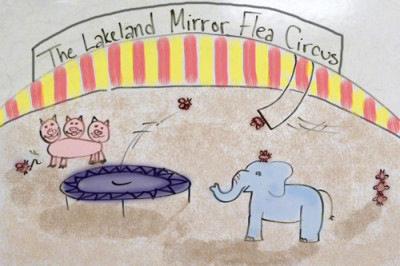 Intensive training program for Mirror Flea Circus